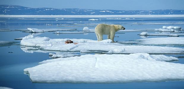 Giganti dell'oil & gas pronti a sfruttare il petrolio artico
