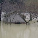 """""""GFMS"""" un nuovo alleato nella previsione delle alluvioni"""