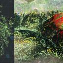 Interferometria satellitare (SAR) per la mitigazione del rischio idrogeologico